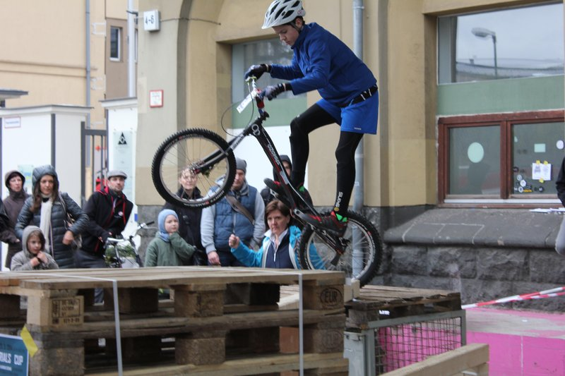 2014_3 Berliner Fahrradschau_II  000
